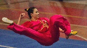 Meet Wushu – the spectacular Chinese Martial Art