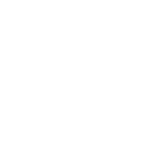Logo of International Netball Federation